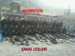 pkk teröristleri tsk1