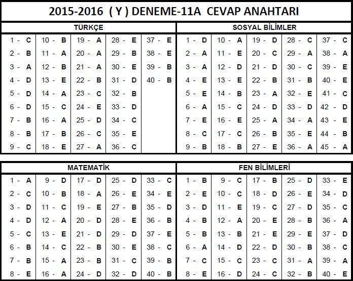 12.Sınıf Fem YGS 11A