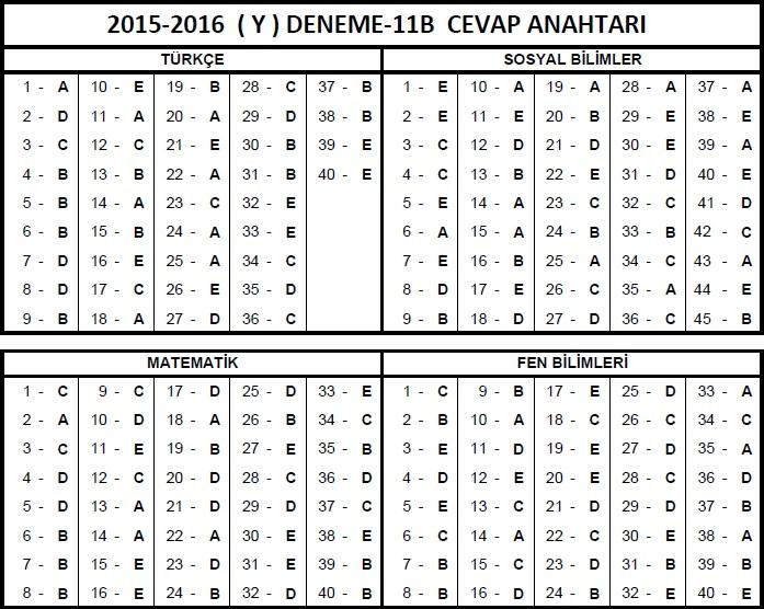 12.Sınıf Fem YGS 11B